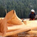 Flared Character Western Red Cedar Log