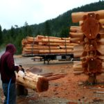 Preasure Peeling a Western Red Cedar Log Post - LCLH