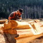 Western Red Cedar Lake Country Log Home Joinery