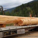 Handcrafted Western Red Cedar Log Beams loading onto trailers headed to Colorado