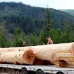 Handcrafted Western Red Cedar Log Beams