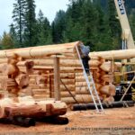 Handcrafted Western Red Cedar Log Walls with Flared Character Butts